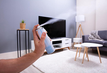 The Dangers of Air fresheners